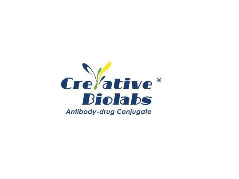 Anti-CD79b (clone ch10D10)-Mc-MMAF ADC