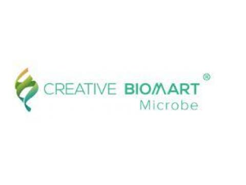 Microbiology Services for Potable Water