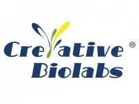 Antibody/Peptide Discovery for Bacterial Disease