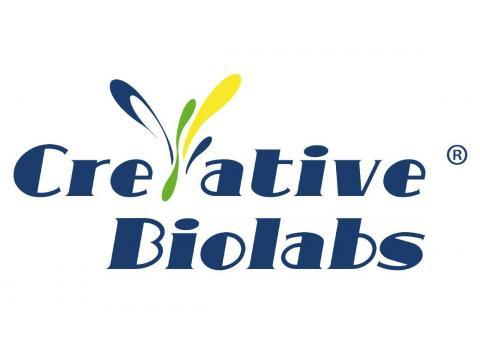 Discovery of Neutralizing Antibody (NAb) and Peptide Targeting Ebola Virus