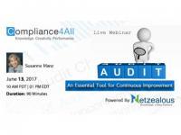 Audit - How to Improve Your Internal Audit program - 2017