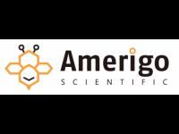 Human Angiotensin Ii Competitive ELISA kit
