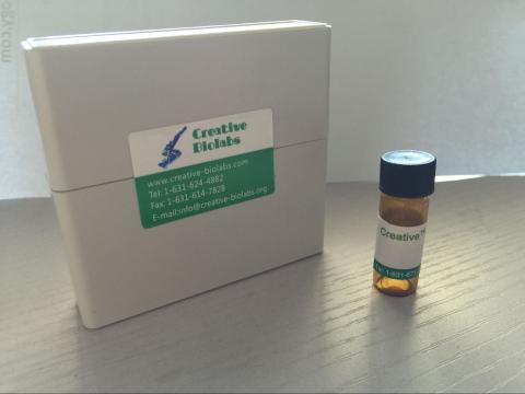 Anti-E. faecium ACM protein Therapeutic Antibody