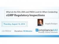 When Conducting cGMP Regulatory Inspections 2018