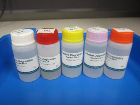 Rabbit Complement Factor B ELISA Kit
