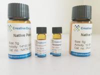 Native Plant Superoxide Dismutase