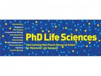 PhD Student Positions at IMPRS for Molecular Life Sciences, Munich