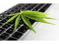 Creating Awareness About Marijuana in the Workplace - 2020
