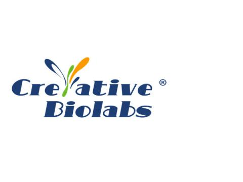Custom Ion Channel Protein Production Service