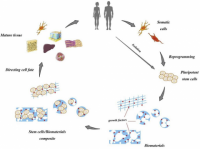 E.Coli-Recombinant Human HGPRT/HPRT1 (N-6His)